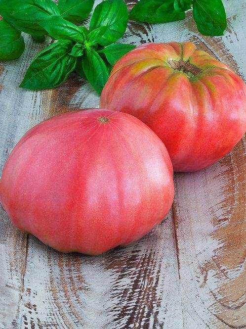 Tomato - Pink Brandywine