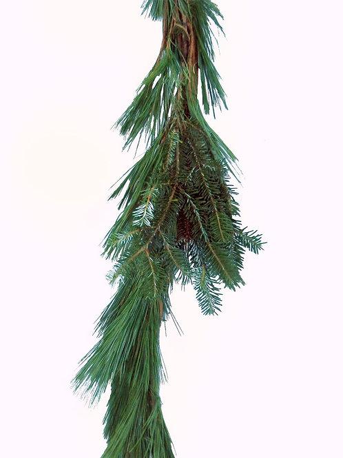 Roping - White Pine & Fraser