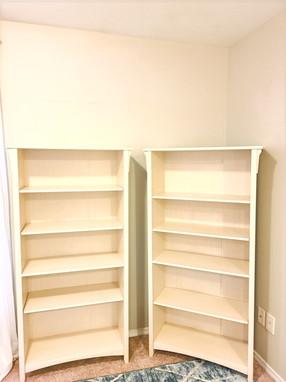 Bookshelves (Before)