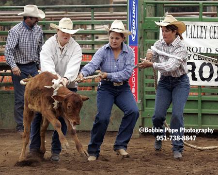 steer-calf dressing.jpg