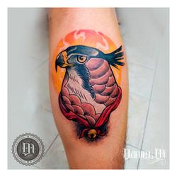 Aguila Tattoo Neotradicional