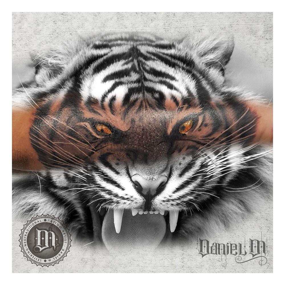 Tigre Tattoo Realismo