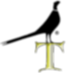 NEW-LOGO-T-BIRD--REGISTERED-_BLACK.png
