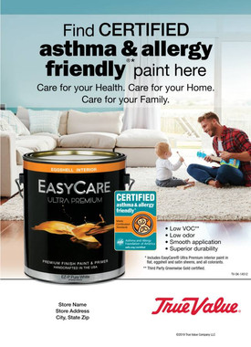 Low VOC and Low Odor Paint