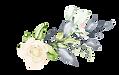 Flores_01.png