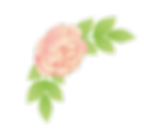 Flores_06.png