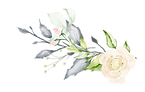 Flores_02.png