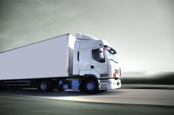 camion blanco