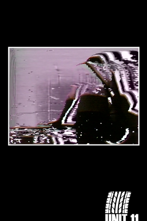 A/V001: UNIT 11 with Benjamin Greenberg & Joe Denardo VHS