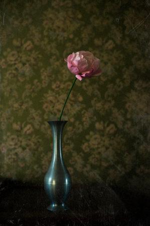 studio photo photographe paris décoration vase
