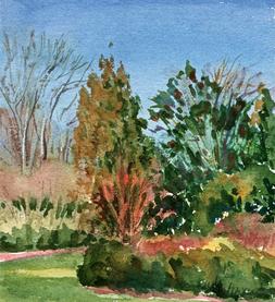 Sally Cooper's Garden, Charlotte-