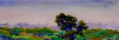 Morning Treetops