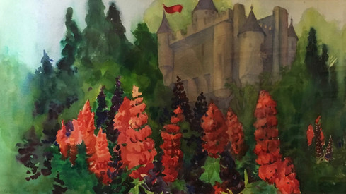 Castle Lupines