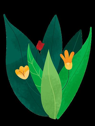 Plant_bush_flowers_edited_edited.png