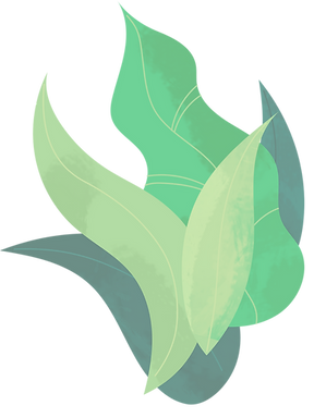 Plant_bush_edited.png