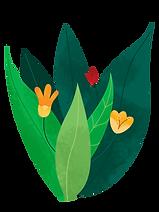 Plant_bush_flowers_edited.png