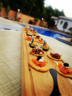 CANAPES PARTY