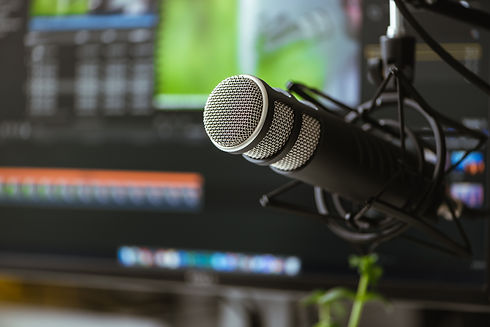 Microphone on the background of the computer monitor..jpg