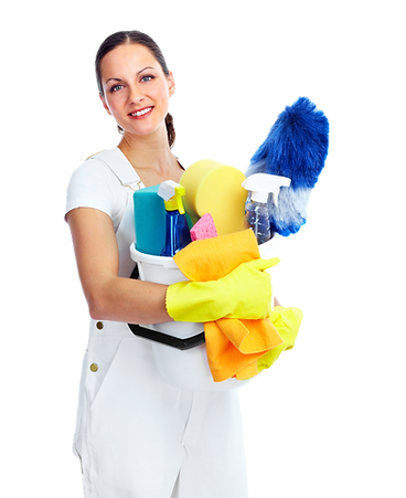 housewife%20cleaner_edited.png