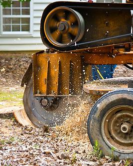 A Stump Grinding  Machine Removing a Stu