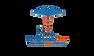 Ideal HealthCare Logo