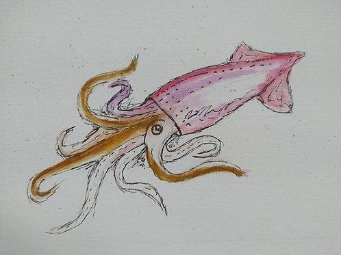 Just Squiding