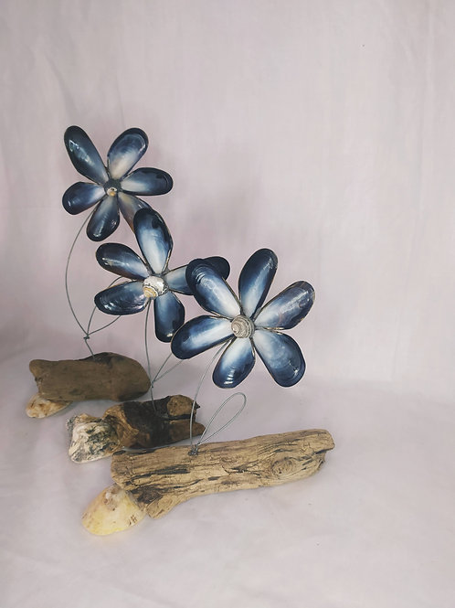 Mussel Shell Flowers