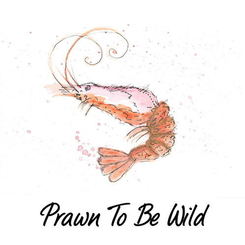 Prawn to be wild