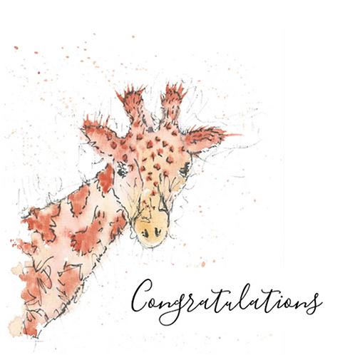 Giraffe - Congratulations