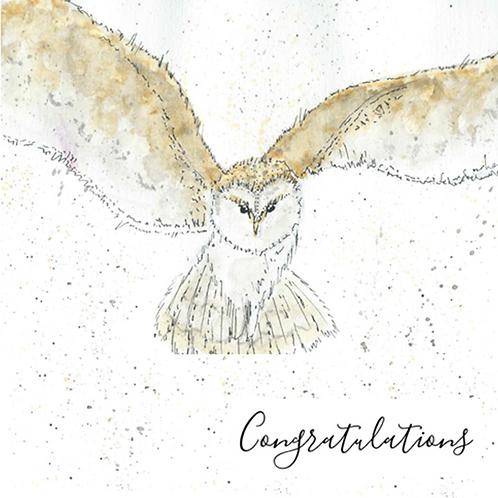 Owl - Congratulations