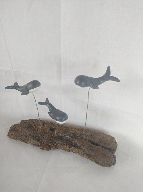 Driftwood Whale