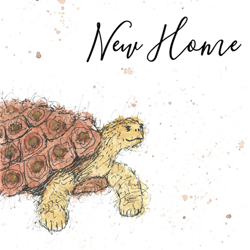 Tortoise - New Home