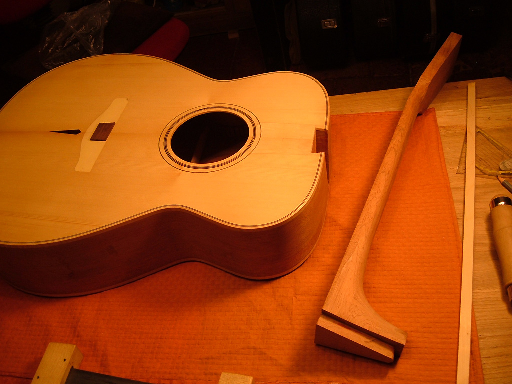 Donzella Custom 2
