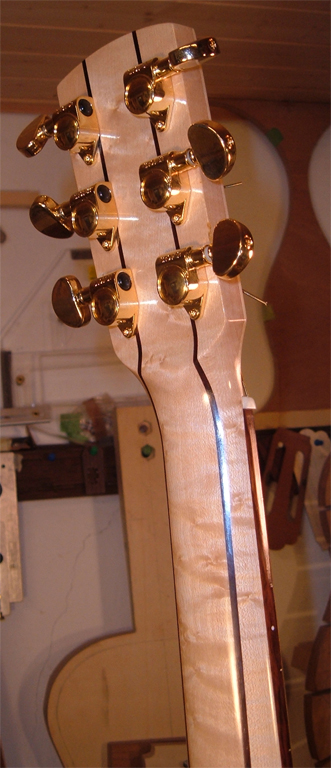 Donzella Maple 2