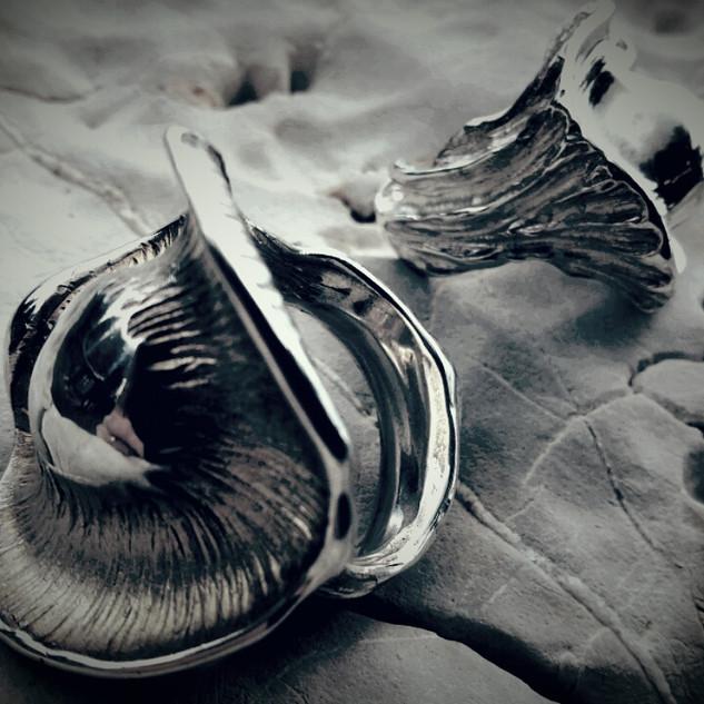 Médusa et Médusette