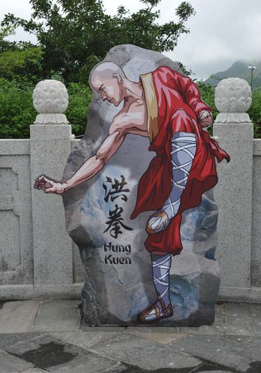 C009_NP360_Kungfu_3.JPG