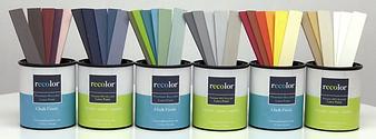 recolor paint.PNG