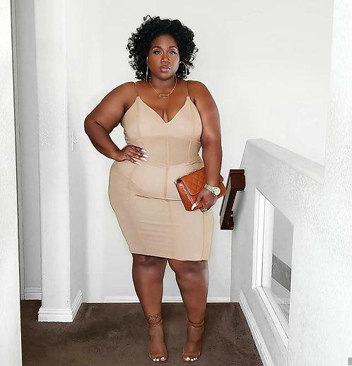 Fashion Nova Nude Mesh Dress 3X