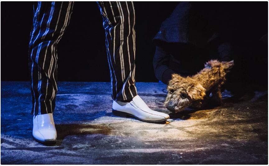 Screenshot-2018-3-27_LOST_DOG…_PERRO_PERDIDO_Cal_y_Canto_Teatro(4)