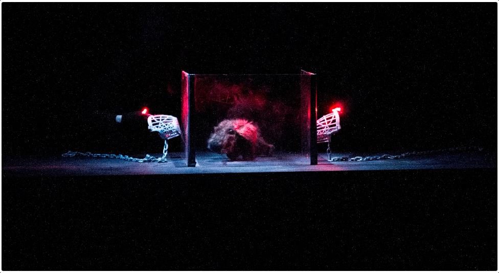 Screenshot-2018-3-27_LOST_DOG…_PERRO_PERDIDO_Cal_y_Canto_Teatro(7)