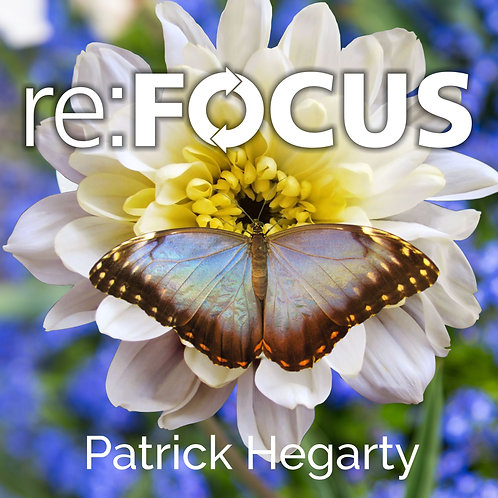 re:FOCUS - MP3