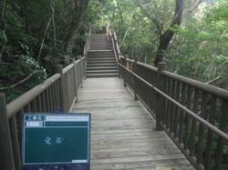 自然観察の森ボードウォーク設置工事