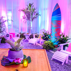 white palm tree drape pink lighting surf