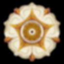 480px-Logo_Universitas_Gadjah_Mada.png