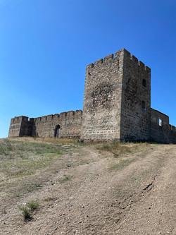 Castle of Valongo