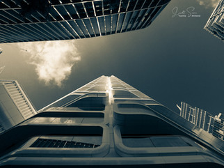 Rund um das Skyline Plaza Frankfurt