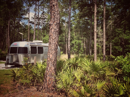 Scenes From Colt Creek State Park, Florida