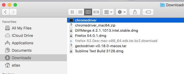 CHROMEDRIVER MAC OS BREW - Brew install chrome, chrome is a fast