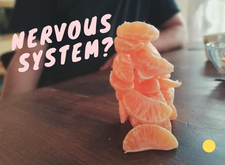 dein Nervensystem