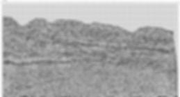 80-19.jpg